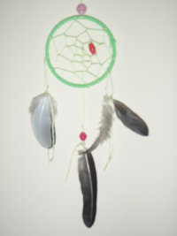 3 inch £15 green crow and pidgeon feathers.